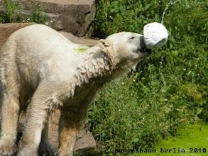 Photo: Ballspiel mit den Besuchern :-)
