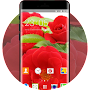 Theme for Alcatel One Touch Fire E Flower LWP APK icon