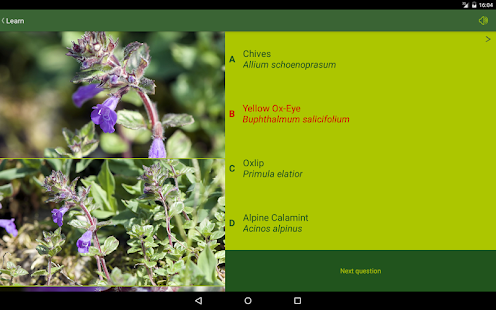 AlpineFlower Finder - Europe- screenshot thumbnail