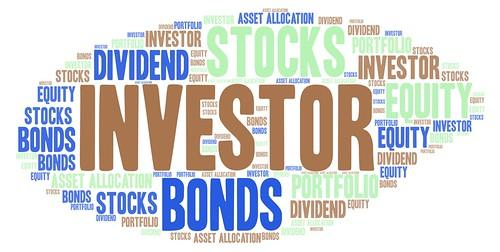 Investor Word Cloud