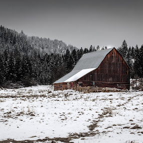 Country Side by Shaun Schlager - Landscapes Prairies, Meadows & Fields ( idaho, field, ranch, winter, harrison, barn, countryscape, trees, cloudy, landscape, country side,  )