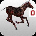 FoalScore