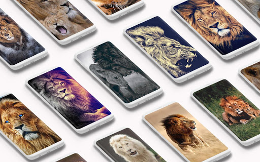 Lion Wallpaper ud83eudd81 screenshots 1