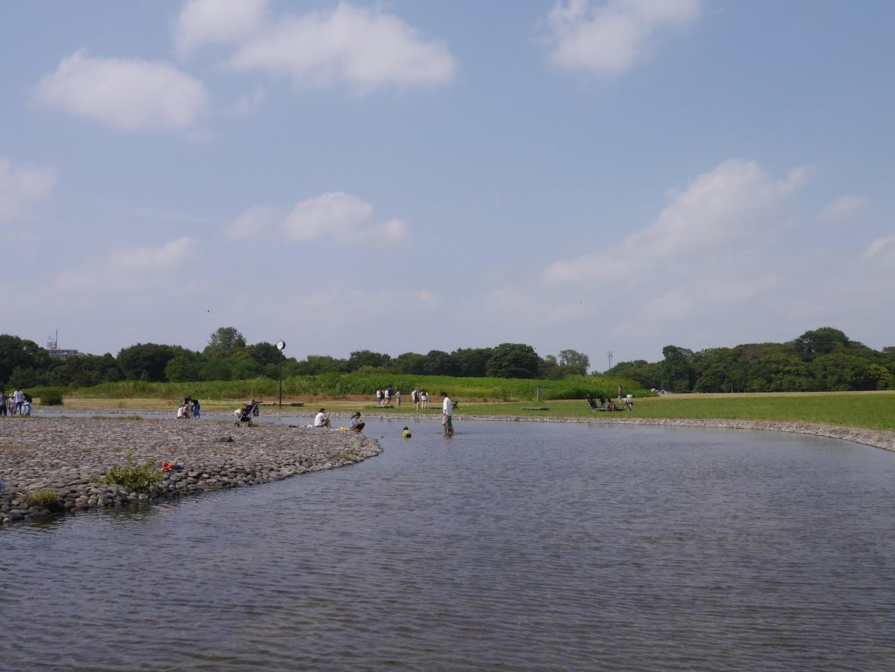 切なく水元公園でめでたいバーベキュー。