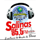 Download Radio Salinas Fm 95.5 Mhz For PC Windows and Mac