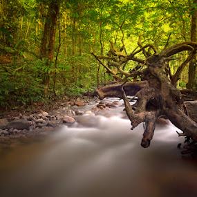 by Izham Khalid - Landscapes Waterscapes ( nature )