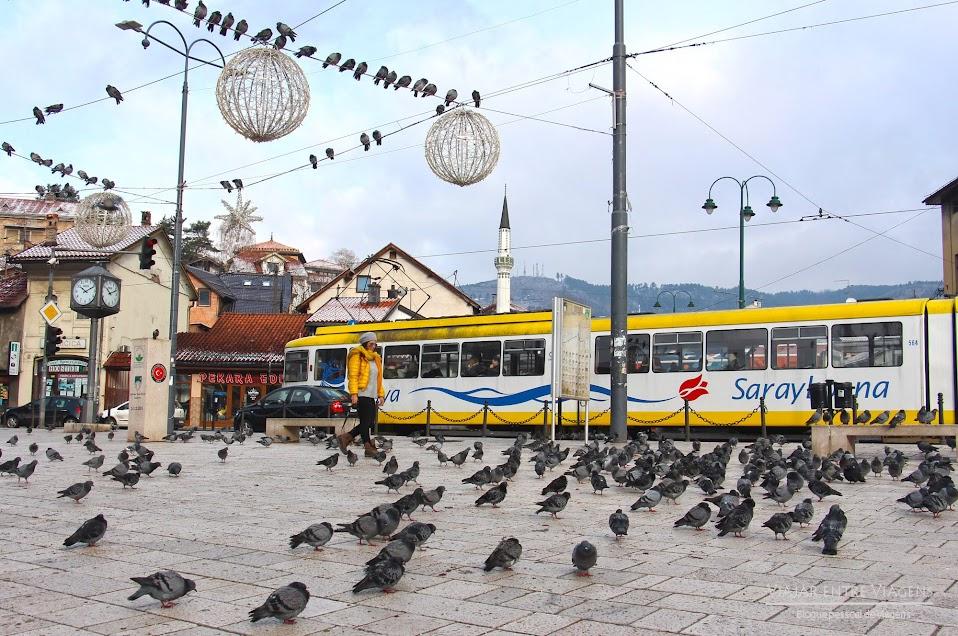 VIAJAR NOS BALCÃS - Roteiro de lugares obrigatórios a visitar | Bósnia, Croácia, Montenegro, Albânia, Macedónia e Kosovo