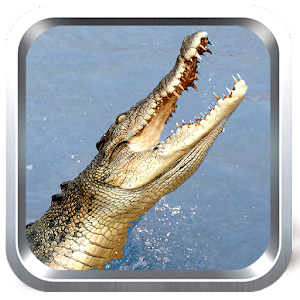 Wild Crocodile Simulator Free for PC and MAC