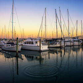 West Haven Marina Auckland. by Graeme Hunter - Transportation Boats