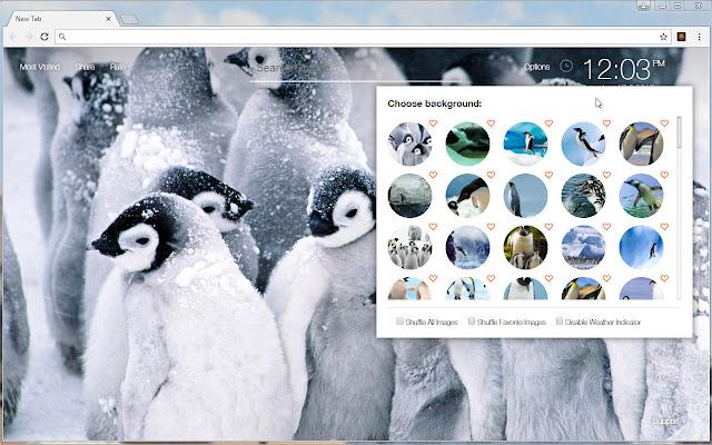 Penguin Wallpapers HD Custom Penguins New Tab
