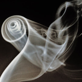 Dancing smoke  by Svetlana Zovnier  - Black & White Abstract ( rare, black and white, spiral, dance, smock )