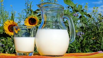 En España, la leche semidesnatada es la más consumida.