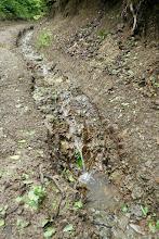Photo: kőzetig lemosta a talajt