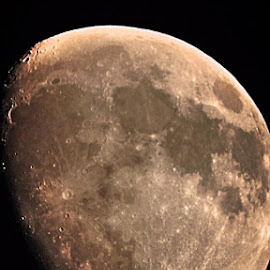 November Moon by Bill Martin - Landscapes Starscapes ( moon, craters, moon surface, rough surface, night,  )
