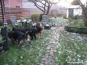 Photo: Naar de achtertuin