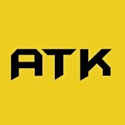 ATK: BUSINESS OPTIMIZATION