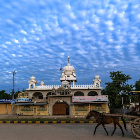 On the way by Bishal Ranamagar - City,  Street & Park  Street Scenes ( sky, car\t, blue, horsecard, horse, gurudwara,  )