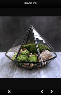 DIY Terrarium Design - náhled