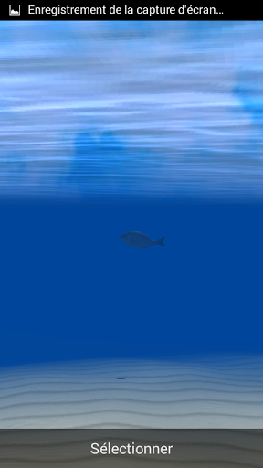 Inside Shark 3d Wallpaper