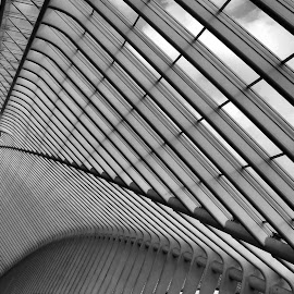Guillemins, Liège by Anita Berghoef - Black & White Buildings & Architecture ( modern, train station, black and white, belgium, guillemins, architecture, liège,  )