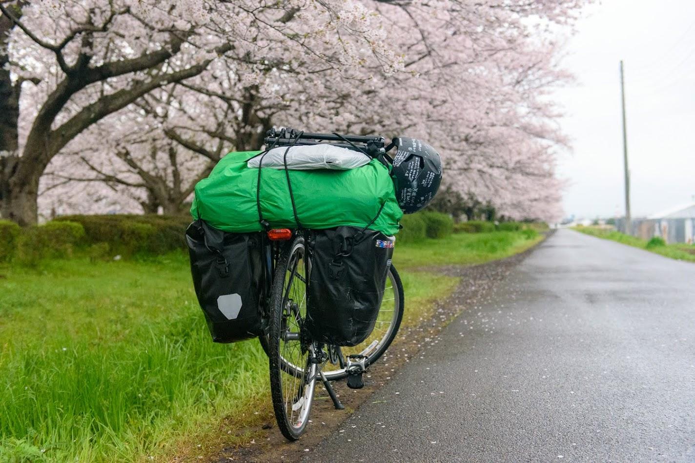 【旅3日目】日本一周はじめての雨でいきなりスリップ…雨と桜と温泉と