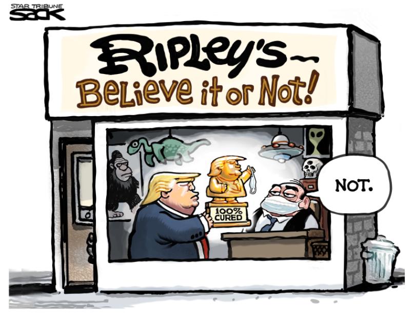 C:\Users\WALTER DUQUE\Desktop\0000OtraOpinion\2020OtraOpinion\202010OCT\Trump vs BIDEN\244382_rgb_768.png