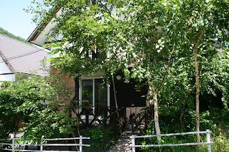 Photo: 入り口付近は木が多いです。 在入口附近有很多树 trees at the entrance