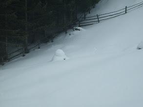 Photo: Ometto di neve