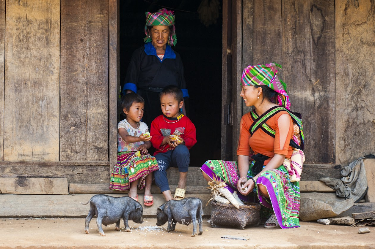 Visit Hmong village in Mu Cang Chai