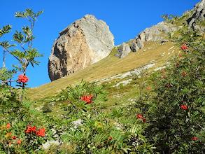 Photo: Marcella Caffo - Rocca Senghi
