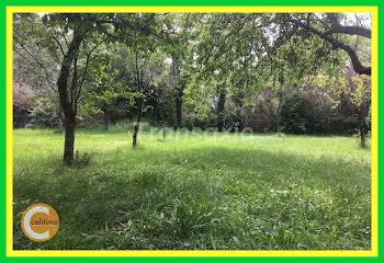 terrain à Bruère-Allichamps (18)