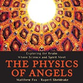 The Physics of Angels