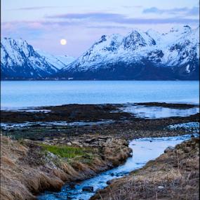 Creek by Yvonne Reinholdtsen - Uncategorized All Uncategorized ( water, moon, creek, spring, norway,  )