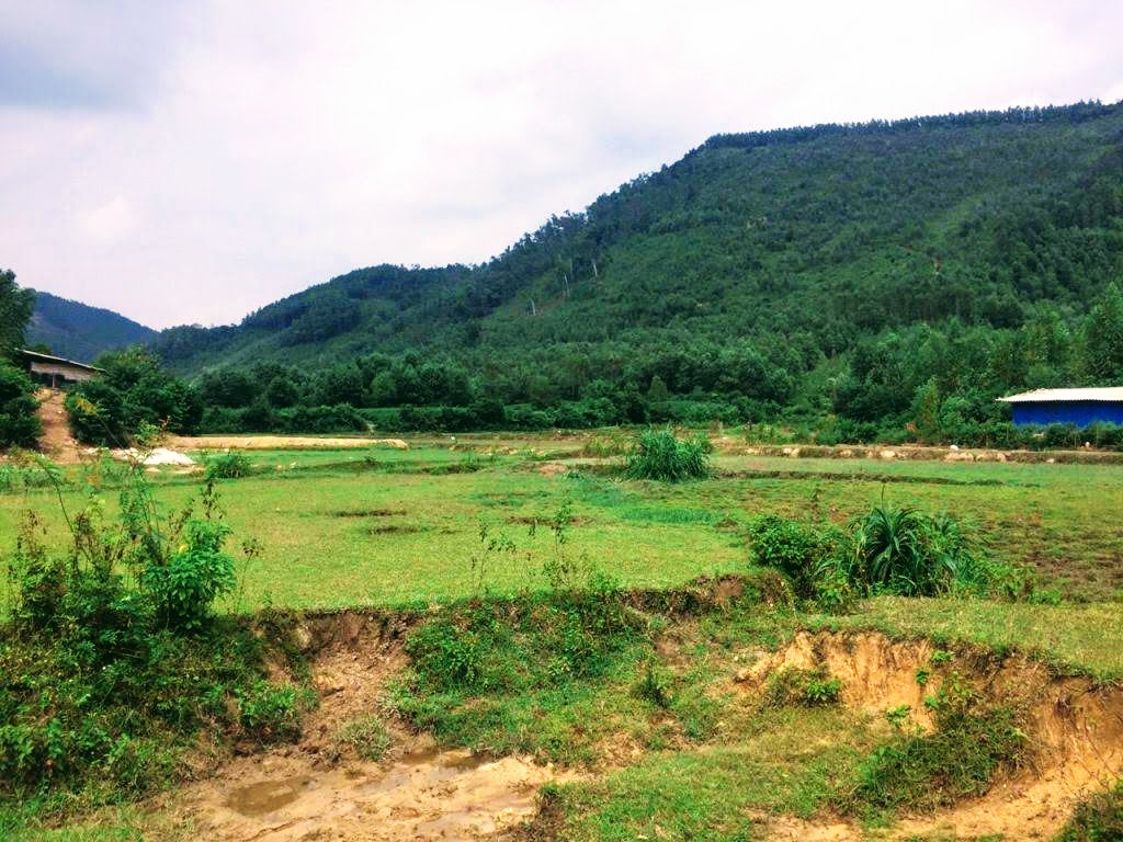 Đất làm trang trại, biệt thự nghỉ dưỡng từ 1hecta đến 7hecta giá hợp lý