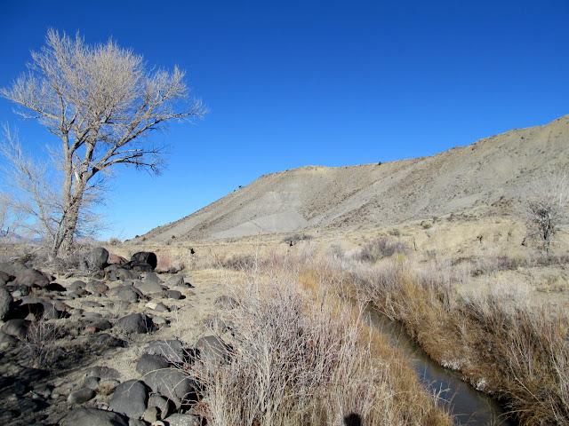 Ivie Creek