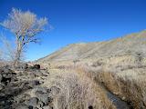 Photo: Ivie Creek