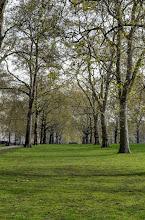 Photo: St James Park