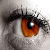 Tải 17 trucos de maquillaje para ojos marrones miễn phí