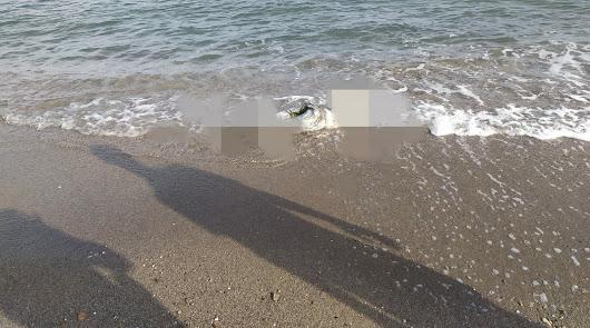 Un cadáver sin brazos ni cabeza aparece frente a una playa de Terreros