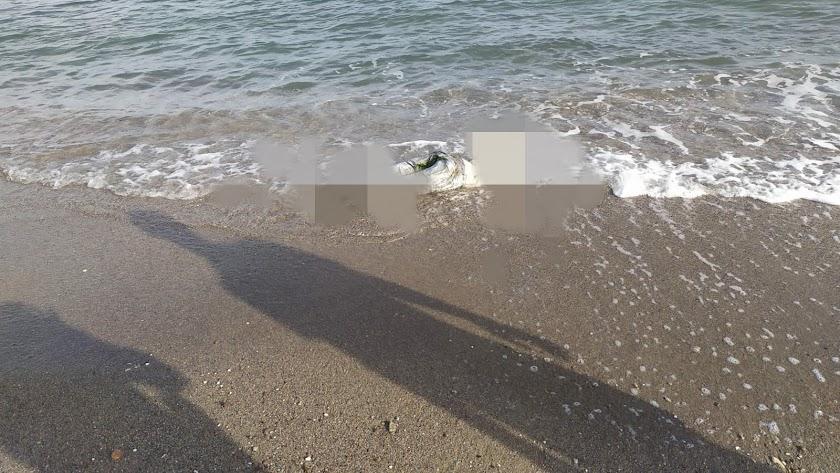 Imagen pixelada del cuerpo hallado este jueves en San Juan de los Terreros.