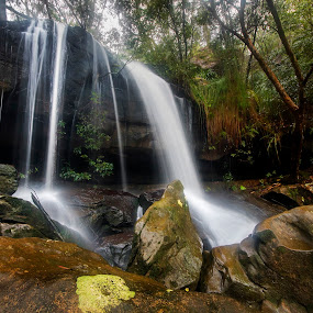 On The Rocks by Geoffrey Wols - Nature Up Close Water ( forest, green, waterfall, bush,  )