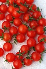 Photo: Red Currant tomato. Photo credit Log House Plants