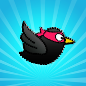 Simple Birds: Free Cool Game