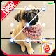 Cute Pug Puppy Lock Screen, Pug Puppy Pattern Pin for PC-Windows 7,8,10 and Mac