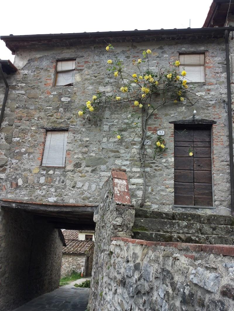 La casa con le rose gialle di Simosac
