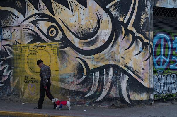 Passeggiata tra i murales di fabioice