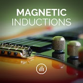 Magnetic Inductions