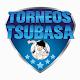Download Torneos Tsubasa For PC Windows and Mac