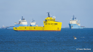 Photo: Waiting ships off Aberdeen Harbour