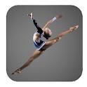 Gymnastics Lessons icon